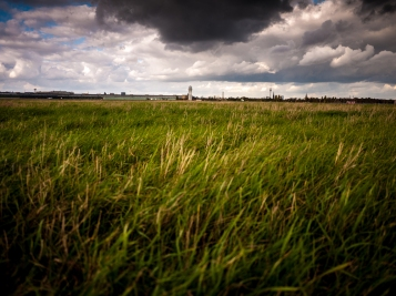 clouds and grass copyright andreas reich 2013