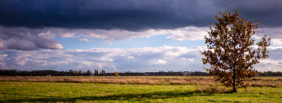panoramic view with tree copyright andreas reich 2013