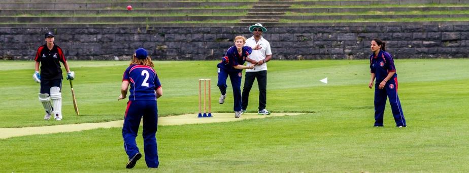 cricket auf demmaifeld